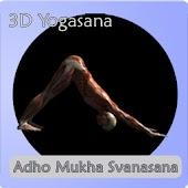 Yoga Asana : Downdog