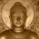 Buddha Quotes & Buddhism Free! 2.9.1 APK for Android