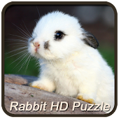 Rabbit HD Puzzle