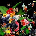 3D cute fishes