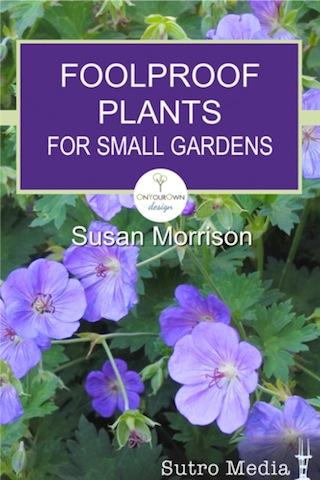 Plant Picks for Small Gardens