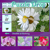 Puzzle Drop - Flower Set