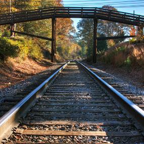 Autumn Rails  by George Holt - Transportation Railway Tracks ( leading lines, pedestrian bridge, railroad tracks, vanishing point, autumn, railroad, fall, bridge, leaves )