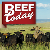 Beef News and Markets