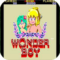 Wonder Boy in Land Photo