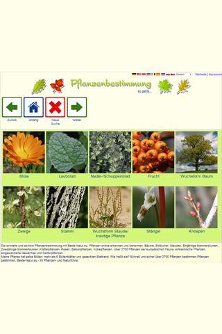 PromoFrames - Paper Photo Frames, Cardboard Picture Frames, Photo Holders, Memory Mate, Other Promot