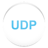 UDP Flood Stress Tester