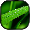 Drops GO Launcher EX Theme icon
