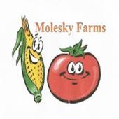 Molesky farms