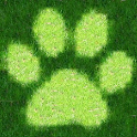 Animal Sports Sound Board icon