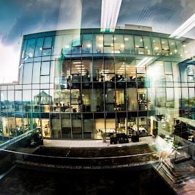 Office Colors by Kiril Krastev - Buildings & Architecture Office Buildings & Hotels ( lights, office, colour, fisheye, building, creative, color, sofia )
