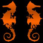 Histrix Calculator icon