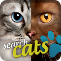 Breeds of cats icon