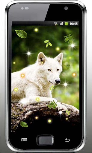 Wolf Nature HQ live wallpaper