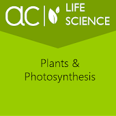Plants & Photosynthesis