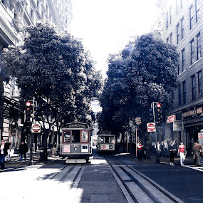 A Street in San Francisco by Robert Gallucci - City,  Street & Park  Street Scenes ( trolley, infrared, street scene, san francisco, historic )