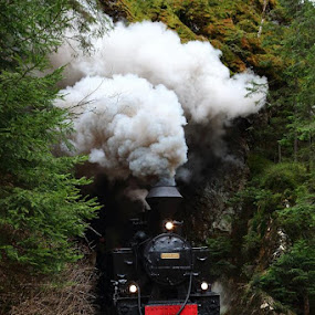 Smoked tunnel by George Marcu - Transportation Trains ( maramures, train, romania, steam, tunnel,  )