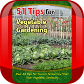 Tips for Vegetable Gardening