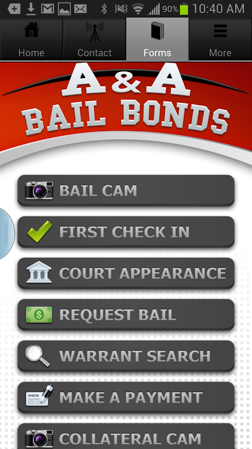 AA Bail- screenshot