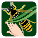 Insects Slice N Learn icon