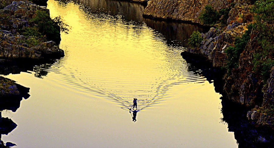 SUP Sunset by Brian Blood - Landscapes Waterscapes ( sunset, sup, american river canyon,  )