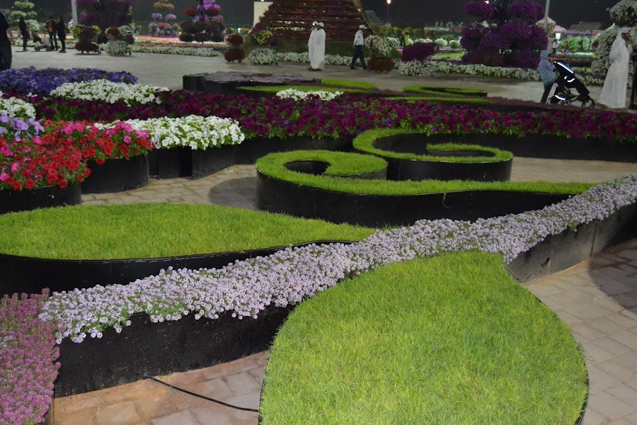 Miracle Garden by Shahnavaz Surfudeen - Flowers Flower Gardens
