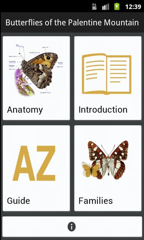 Butterflies of Palencia- screenshot