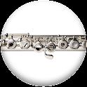 Pro Flute Fingerings icon