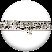 Pro Flute Fingerings