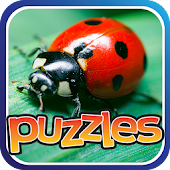 Bugs & Insects Puzzles