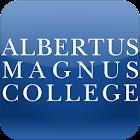Albertus icon
