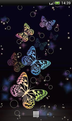夜光彩蝶动态壁纸