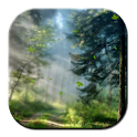 Forest Morning Live Wallpaper icon