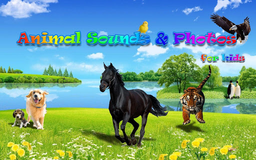 Animal Sounds Photos for Kids