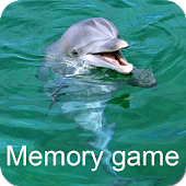 Dolphins Memory Game