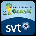 SVT FIFA VM 2014 icon