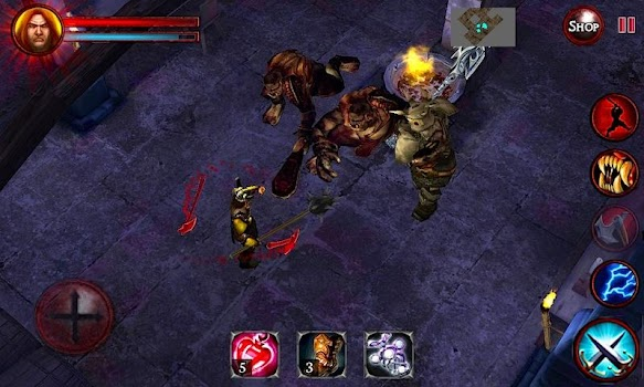 Dungeons and Demons  - Game of Dungeons (Action RPG)