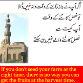 Islamic Thinking