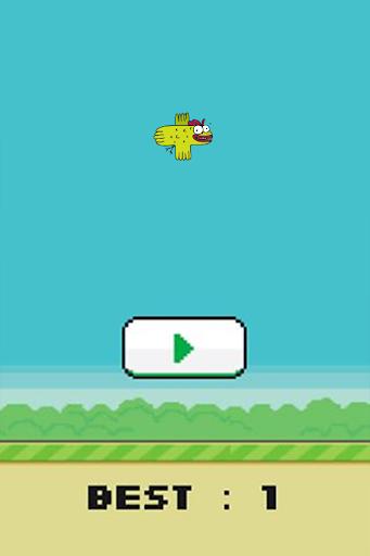 CooCoo Bird