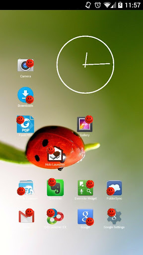 Smiley Red Face Icon Theme