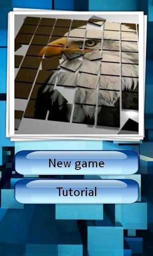 Game Puzzle Image