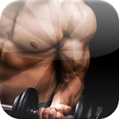 Mass Building Workouts Muscle