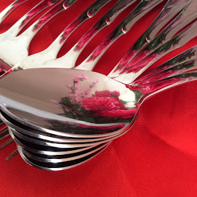 by Mary Yeo - Artistic Objects Cups, Plates & Utensils ( kitchen utensil, silverware, cutlery,  )