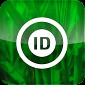 Forage Plant Identification