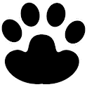 Cat's Games icon