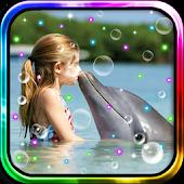 Dolphin Reaf Beach LWP