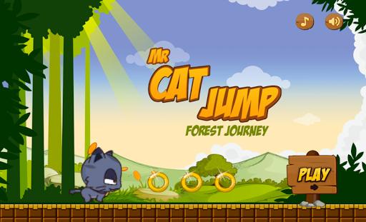 Run Cat Run HD