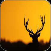 Deer Keyboard