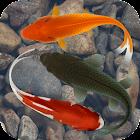Beautiful Fish Screensaver Fre icon