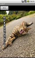Screenshot of Revelation of feral cats